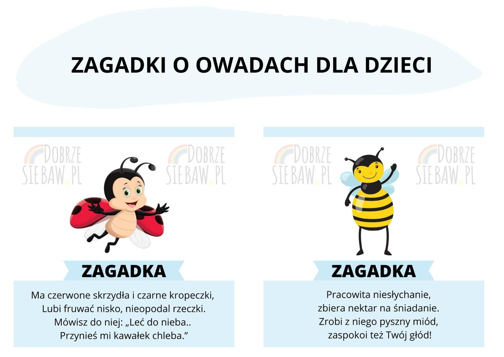 zagadki o owadach dla dzieci